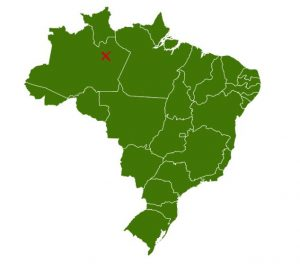 Das Dorf Tumbria in Brasilien ist einer der Vorreiter in Sachen Agroforst.